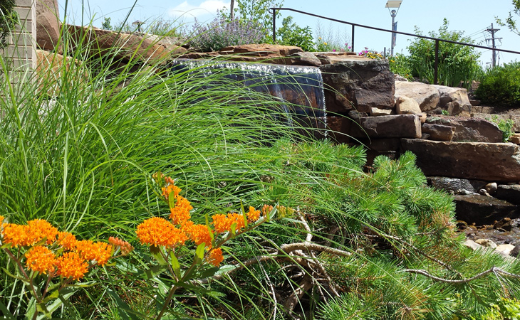 st-louis-native-landscaping