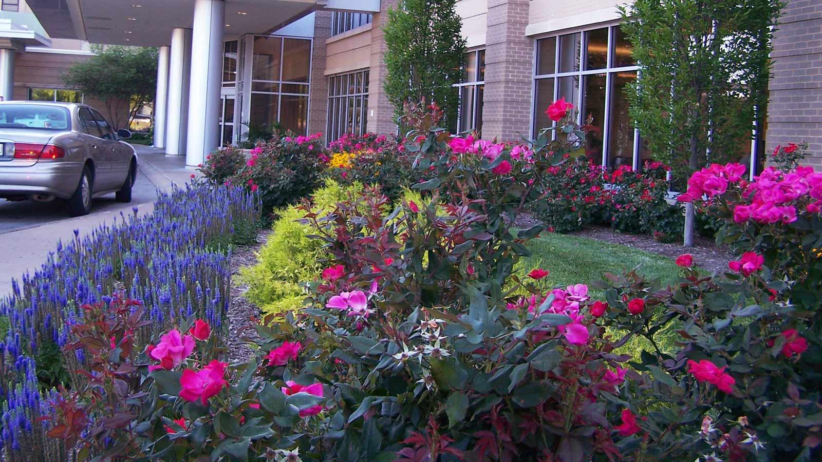 Landscape Design For St Louis Businesses Commercial Build