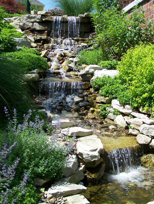 Residential landscape landscaping residential design for Landscape design st louis